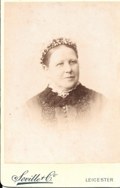 cabinet photograph - lady with braided hair # 1460